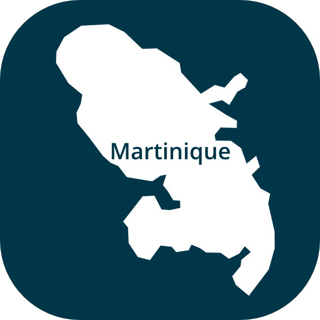 Icones-region-Martinique
